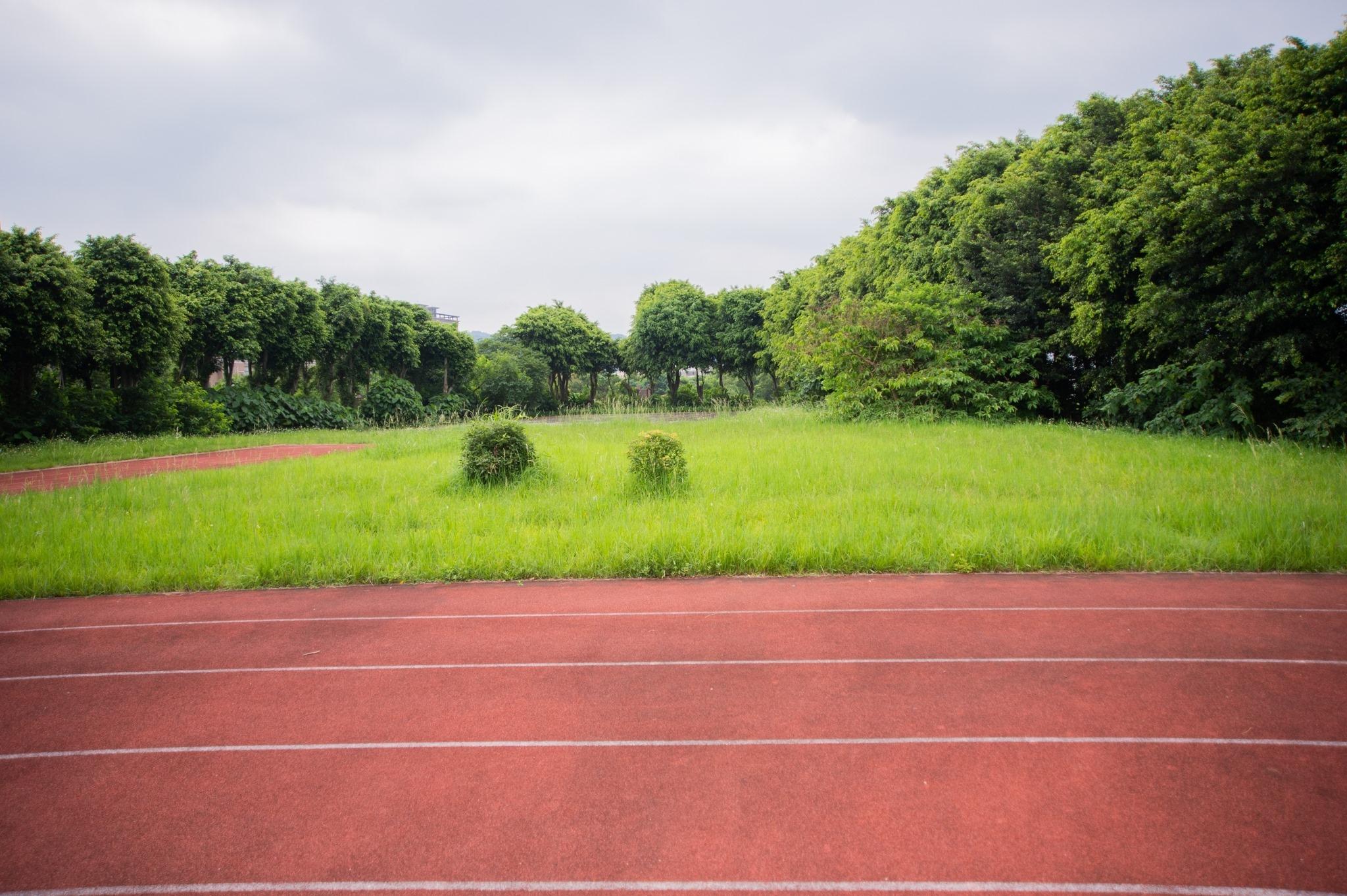 將在暑假期間,利用空地做簡易紅土練習場,以後專供尖山國中棒球隊使用。